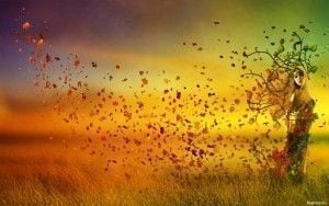 Cuentos Para Reflexionar 35 Lecturas Breves De Reflexión