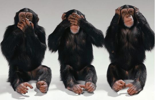 Monos-Sesgo