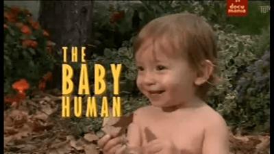 Baby human