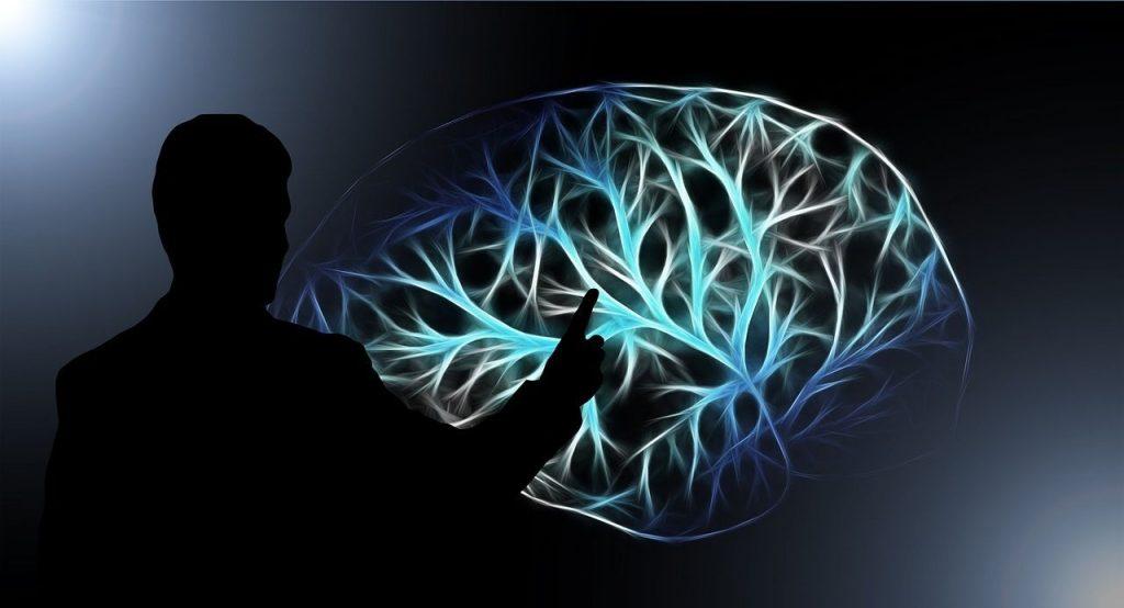 Cerebro y terapias