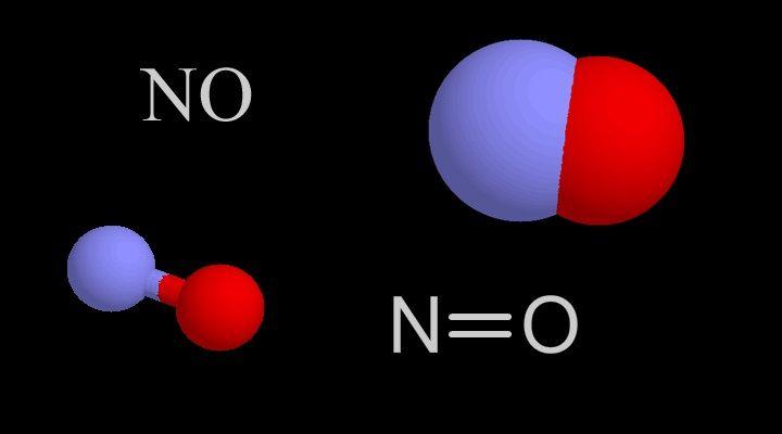 Molécula óxido nítrico