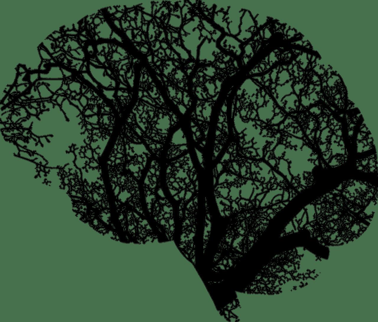 Las representaciones mentales