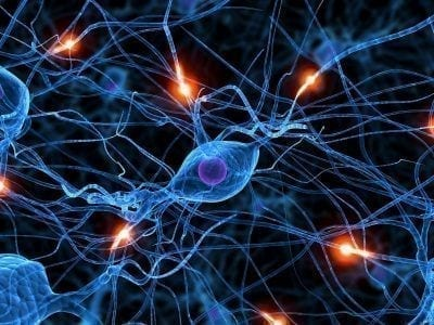 neuronas-grafico